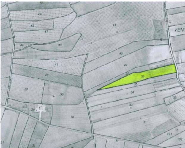 Pinoso Area,Parcelas para construir / Building plots,1750